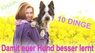 10 DINGE  -  Damit euer Hund schneller lernt