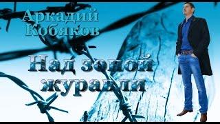 Download Его голос притягивает , как магнит!!! Аркадий Кобяков Над нашей зоной журавли Mp3 and Videos