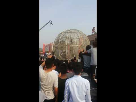 Motorcycles Riding in Caged Sphere, Puyang Vocational and Technical College