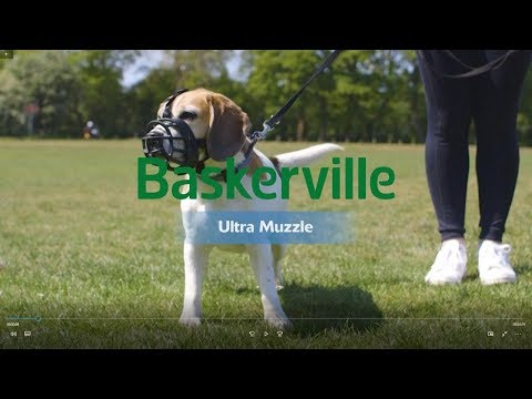 New Baskerville Ultra Muzzle How to Use and Fit