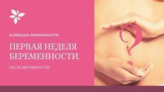 1-2 Неделя Беременности | Я Беременна . Календарь Беременности