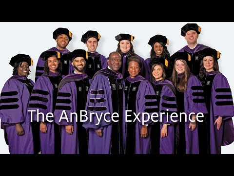 The AnBryce Experience