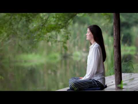 Meditation In The Jungle | Gentle Birds And Rainforest Sound