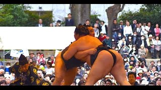 In April an outdoor sumo event is held at Yasukuni Shrine where you...