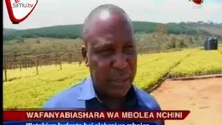 Wafanyabiashara Wa Mbolea Watakiwa Kufuata Bei Elekezi