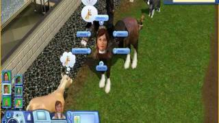 The Sims 3 Pets Gameplay