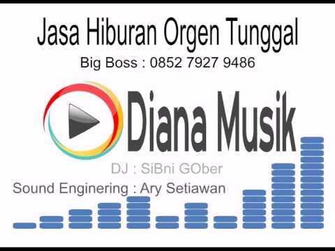 Orgen Tunggal Lampung Diana Musik - Antara Teman dan Kasih