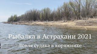 Рыбалка в Астрахани 2021 Ловля СУДАКА в КОРЯЖНИКЕ