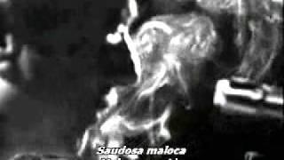 Baixar adoniran barbosa saudosa maloca(filosofia noel rosa)