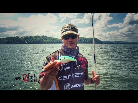 Catch Bass Offshore With Giant Crankbaits