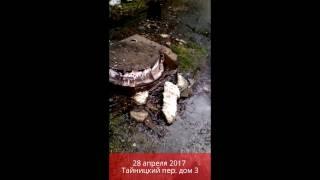 28 апреля 2017 года. В г.Переславль-Залесский замироточила канализация.