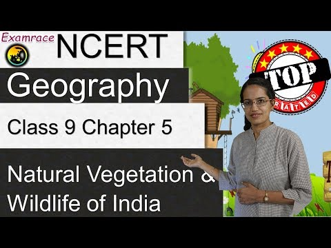 NCERT Class 9 Geography Chapter 5: Natural Vegetation & Wildlife Of India | English | CBSE
