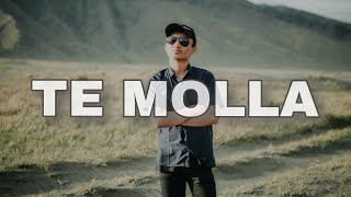 Download Lagu Te molla - rosie sd mp3
