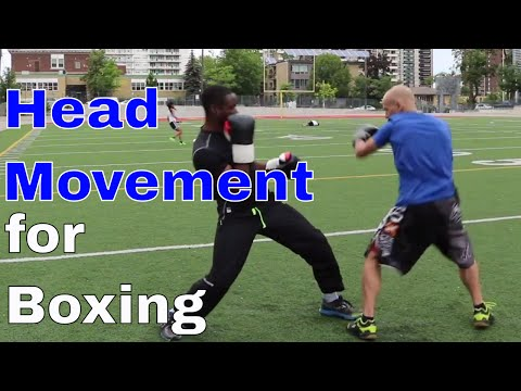 Head Movement for Boxing