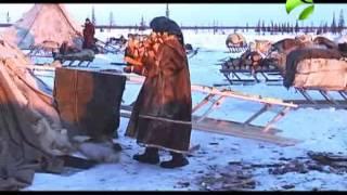 """Полярные истории: """"Граница"""" Часть 1"""
