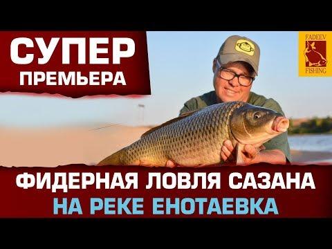 Фидерная  ловля сазана на реке Енотаевка- Астрахань.