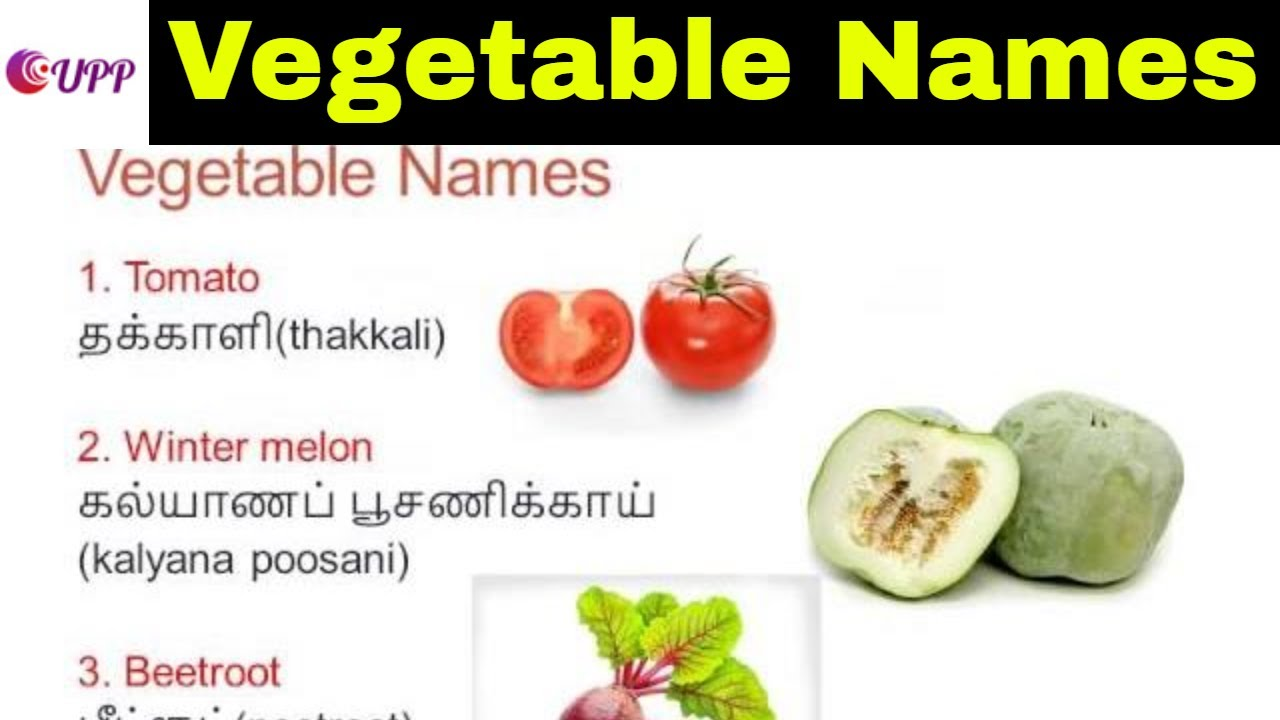 Learn Tamil Through English | Vegetable Names - YouTube