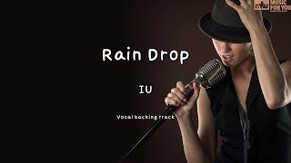 Rain Drop - IU (Instrumental & Lyrics)