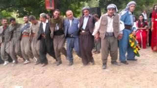 Şırnak Beytüşşebap Baté Köyü Şexani Halayı