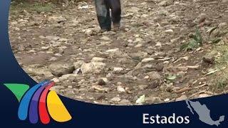 Las calles son intransitables | Noticias de Veracruz
