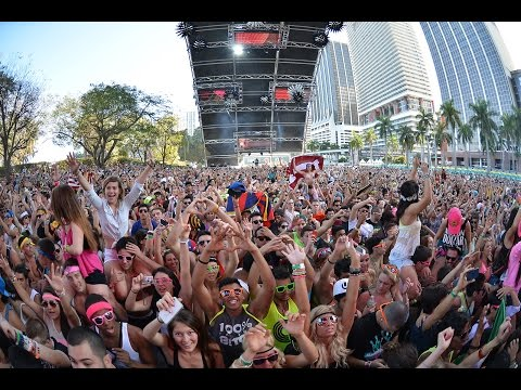The EDM Experience Project: Documentary