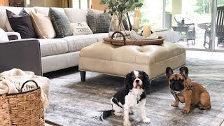 HGTV HOME Design Studio Extreme Makeover with Bassett Furniture