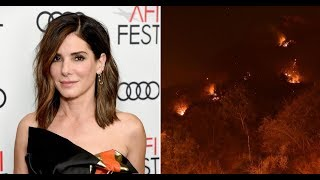 Famous Celeb Sandra Bullock Donates $100,000 to Animals Suffering in California Wildfire