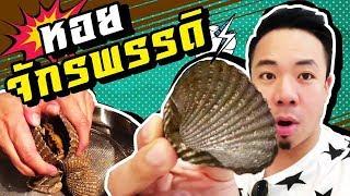 """หอยแคลง""""จักรพรรดิ""""ขึ้นเหลาจานละ-2000-บาท-วันนี้เจอในซุปเปอร์-เสดกูสิแบบนี้"""