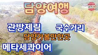 담양여행 관방제림 국수거리 노지캠핑 메타세콰이어 가로수…