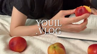 VLOG | 언박싱 | 콩국수 만들기 | 혼밥 | 데일…