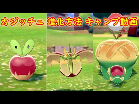 ポケモン 剣 盾 すっぱい りんご ポケモン剣盾で毎日やるべきこと【ふしぎなアメ/きのみ/各種どうぐ】