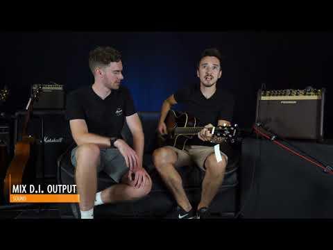 Fishman Pro-LBX-600 Loudbox Artist Acoustic Guitar Amplifier