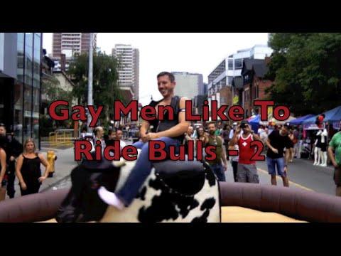 VIDEO GAY BULLS