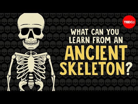 Video image: What can you learn from ancient skeletons? - Farnaz Khatibi