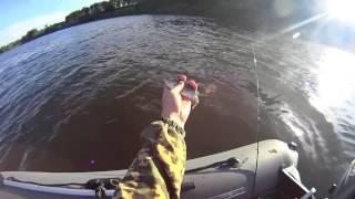 Рыбалка на Челнавке