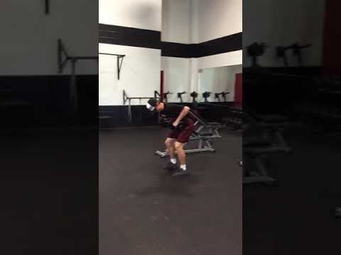 DB Bent Over Row