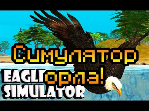 скачать игру симулятор орла на компьютер через торрент - фото 6