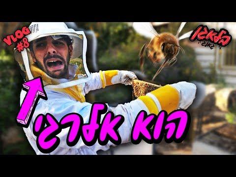 הפחד הכי גדול שלו !! (מיליון דבורים)