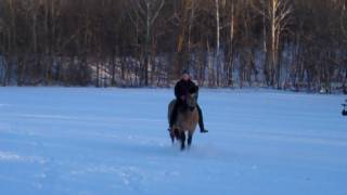 Repeat youtube video Horseback riding in the snow on a Connemara pony