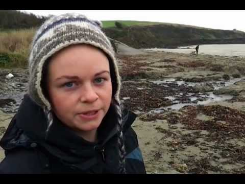 Porthcurnick Interview 2.mp4