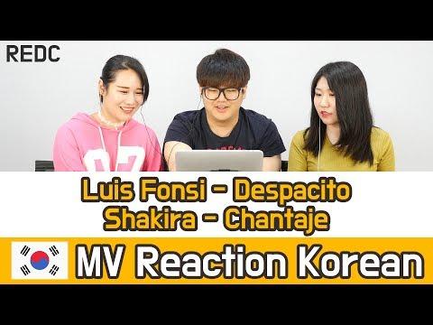 [REDC] 건강한 남미노래 HOT 2곡 리액션 (Luis Fonsi - Despacito / Shakira - Chantaje) Korean MV REACTION