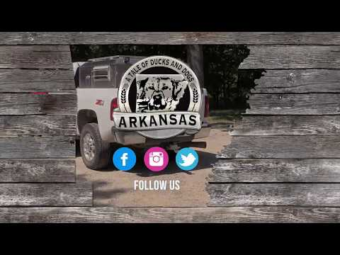 Arkansas: A Tale of Ducks and Dogs - Episode 3 - The Kennel