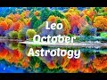 Awesome Financial Opportunity, Go For It! Leo October
