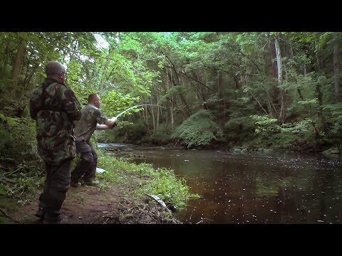 Wild Camping And Fishing