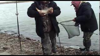 Омская рыбалка.Иртыш.Фидер.Сазан.