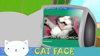 Cat Face | Ooo... Unlucky For Some