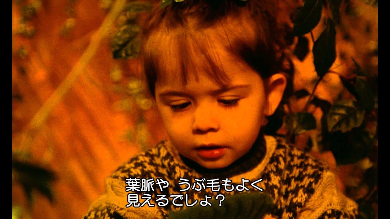 画像: ふたりのベロニカ(予告) wrs.search.yahoo.co.jp