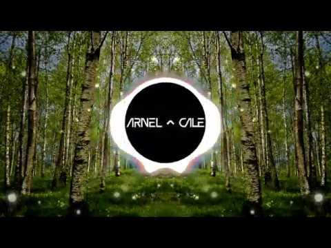 Kygo, Zara Larsson, Tyga - Like It Is (Arnel & Cale Remix) [Free Download]