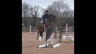 Simulated XC lines with Caroline Moore riding Ali ~ March 2020