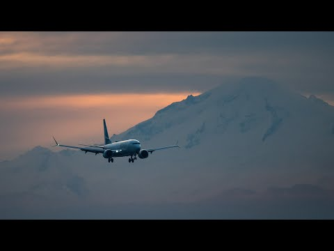 Alberta isn't fining international travellers who refuse to quarantine | COVID-19 in Canada